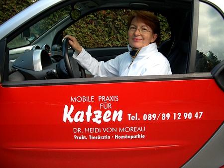Mobile Praxis für Katzen, Tel.: 089 / 89 12 90 47, Dr. Heidi von Moreau, Prakt. Tierärztin, Homöopathie